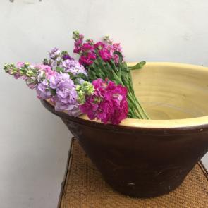 rediscova large french bowl