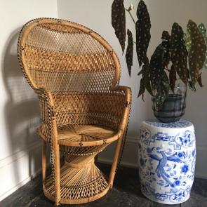 Rediscova vintage Peacock chair