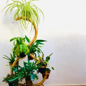 rediscova bamboo plant stand